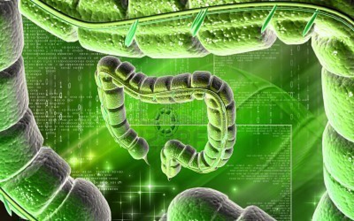 SyntheticBiology